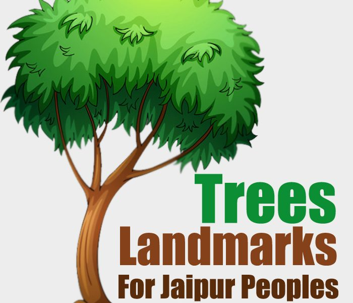 Trees : Landmarks For Jaipur P …